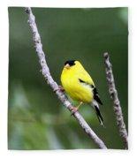 American Goldfinch - Single Male Fleece Blanket