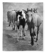 American Quarter Horse Herd In Black And White Fleece Blanket