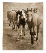 American Quarter Horse Herd In Sepia Fleece Blanket