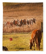 Amish Transportatin All Sizes Fleece Blanket