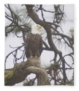An Eagle Perched  Fleece Blanket