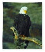 An Eagle Staring Fleece Blanket