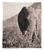 An Elephant Walking In The Bush Samburu Fleece Blanket