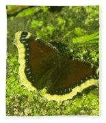 An October Butterfly  Fleece Blanket