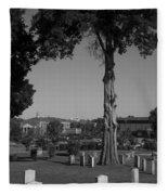 Ancient Cedars And Tombstones Fleece Blanket