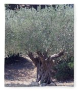 Ancient Old Olive Tree In South France Fleece Blanket