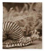Ancient Snail Fleece Blanket