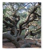 Angel Oak - Johns Island Sc Fleece Blanket
