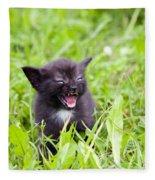 Angry Kitten Fleece Blanket