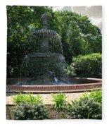 Annapolis Fountain Fleece Blanket