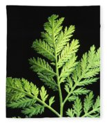 Annual Wormwood Fleece Blanket