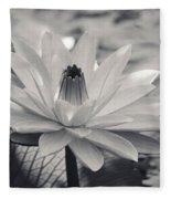 Ansel's Lily Fleece Blanket