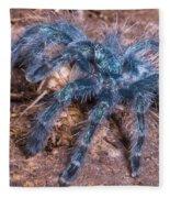 Antilles Pinktoe Tarantula Fleece Blanket