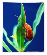 Aphthona Flava Flea Beetle On Leafy Fleece Blanket