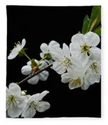 Apple Blossom 1015 Fleece Blanket