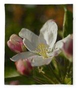 Apple Blossom Fleece Blanket