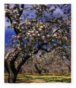 Apple Trees In An Orchard, County Fleece Blanket