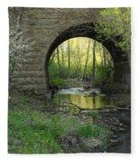 Arch In Spring 3 Fleece Blanket