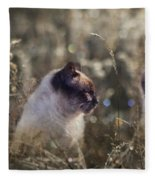 Are You Dreaming About Me - Siamese Feral Cat Fleece Blanket