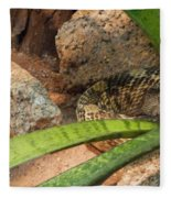Arizona Rattler Fleece Blanket