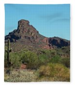 Arizona Scenic Vi Fleece Blanket