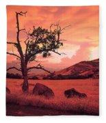 Ashland Sunset Fleece Blanket