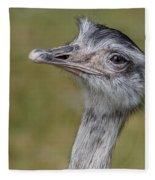 Askance Fleece Blanket