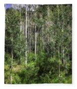 Aspen Trees - Vail Fleece Blanket