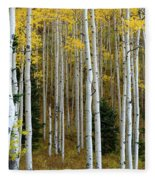Aspen Trunks Fleece Blanket