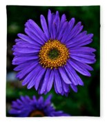 Aster Trio Fleece Blanket