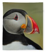 Atlantic Puffin Portrait Fleece Blanket