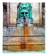 Au Non Potable A Fountain In Arles Fleece Blanket