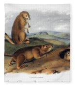 Audubon: Prairie Dog, 1844 Fleece Blanket