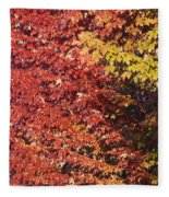 Autumn Arrival Fleece Blanket