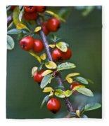 Autumn Berries Fleece Blanket
