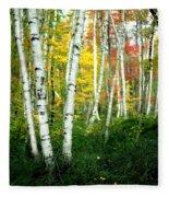 Autumn Birch Grove Fleece Blanket