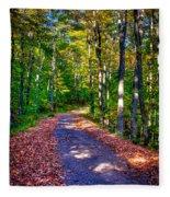 Adirondack Color 53 Fleece Blanket
