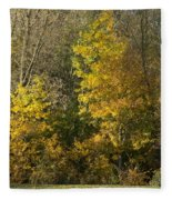 Autumn Colours Fleece Blanket