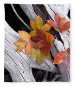 Autumn Driftwood 2 Fleece Blanket
