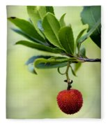 Autumn Fruits In Red Fleece Blanket