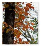 Autumn Glory At Tannehill Fleece Blanket