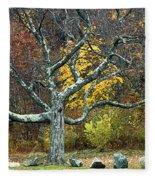 Autumn Grandfather Tree 2 Fleece Blanket