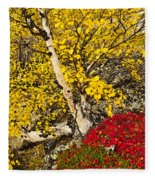 Autumn In Finland Fleece Blanket