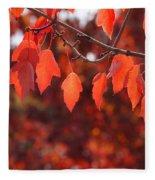 Autumn Leaves In Medford Fleece Blanket