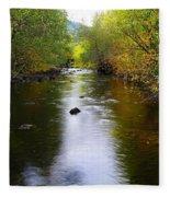 Autumn On Satus Creek  Fleece Blanket