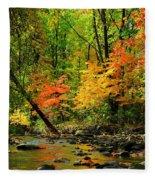 Autumn Reflects Fleece Blanket