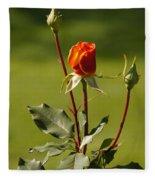 Autumn Rose Fleece Blanket