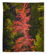 Autumn Scene Of Colorful Red Tree Along The Little Manistee River In Michigan No. 0902 Fleece Blanket