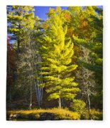 Autumn Scene Of Colorful Trees On The Little Manistee River In Michigan No. 0855 Fleece Blanket
