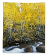 Autumn Stream Iv Fleece Blanket